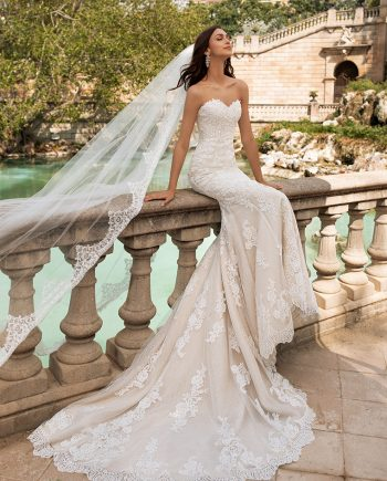 Lace Wedding Dress Pronovias Princia